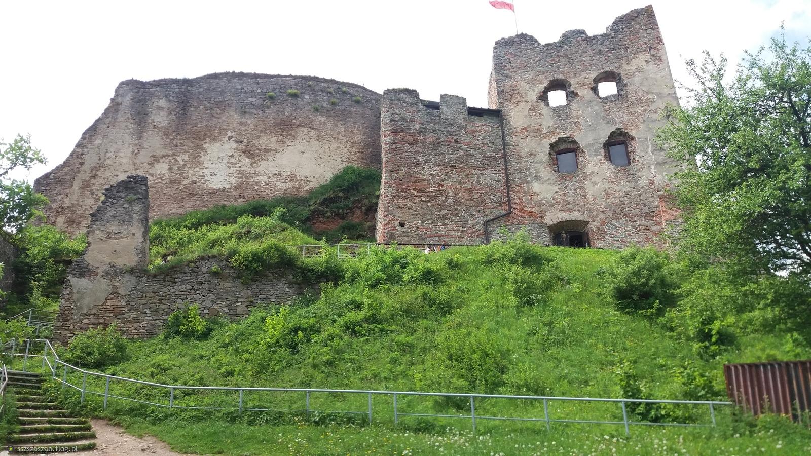 Zamek królów Polski