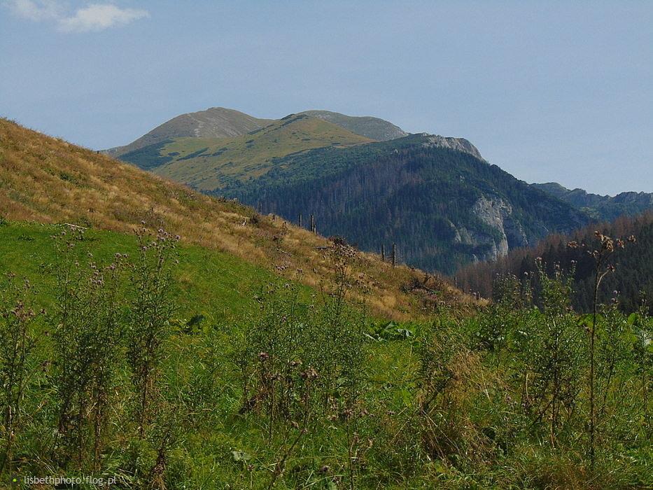 Dolina Lejowa.Widok ze szlaku.