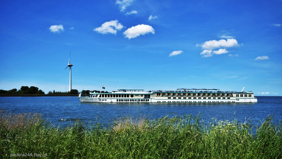 Lato w Holandii