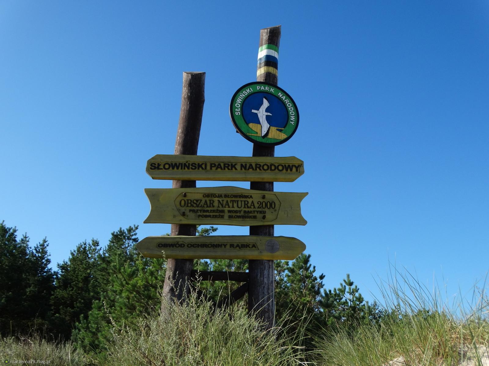 Łeba - Roślinność w Słowińskim Parku Narodowym dla Ciebie Jurku ze słonecznymi pozdrowieniami ☼