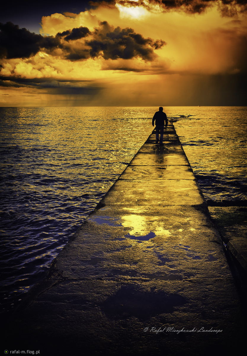 Złota drogą ku słońcu, po energię życia:)