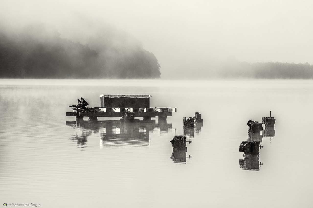 Jezioro Orle nad ranem
