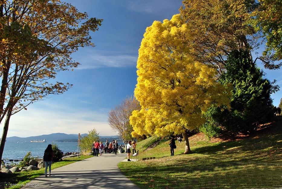 Jesień w Stanley Park.