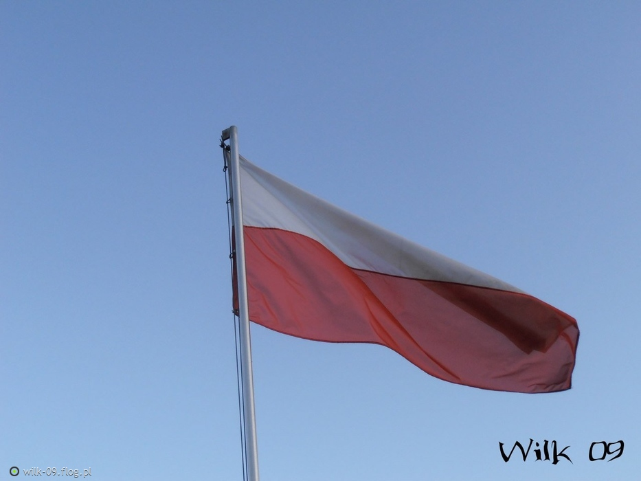 Dzień Niepodległości
