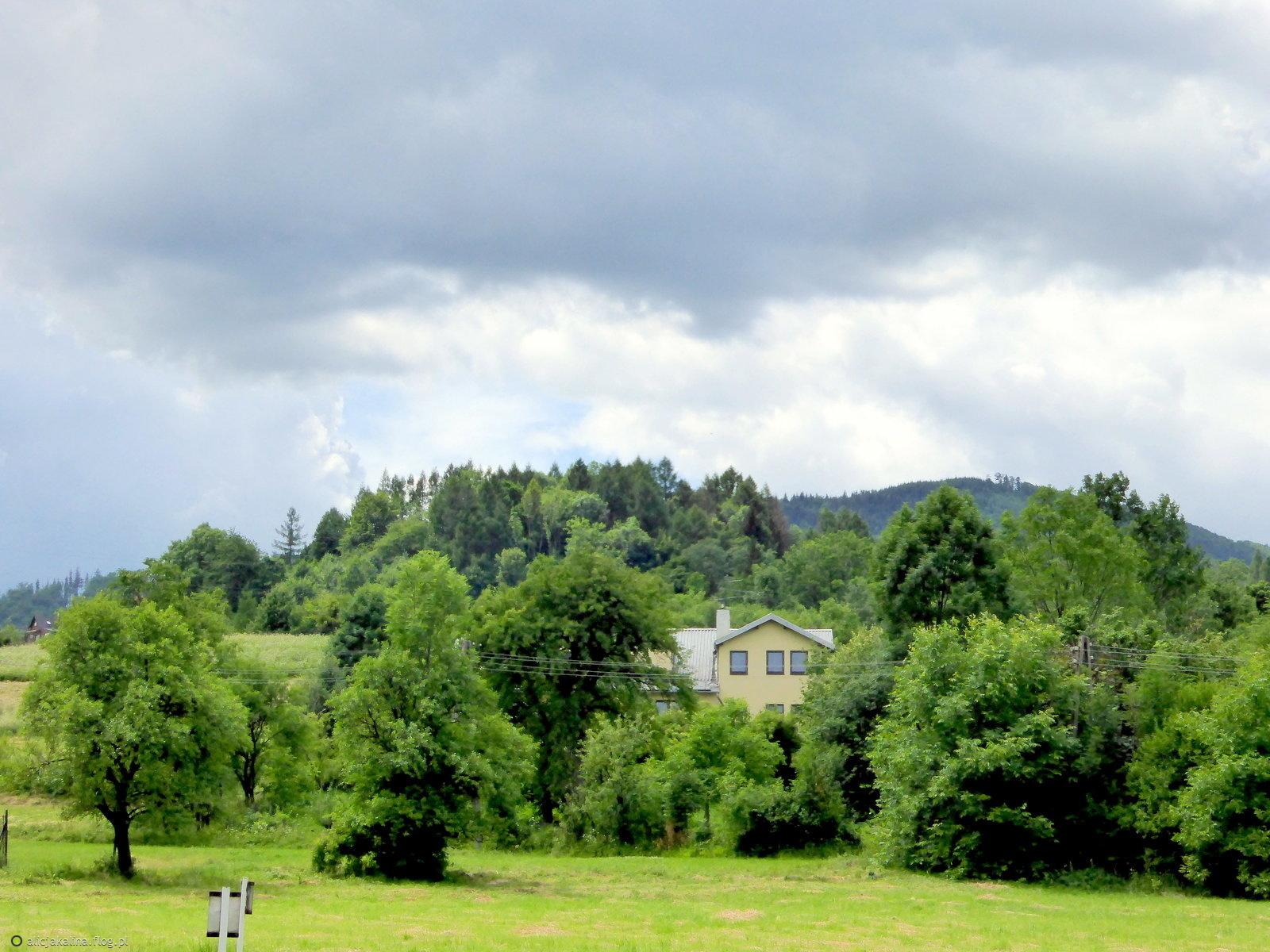Dookoła Manhatanu domy w zieleni