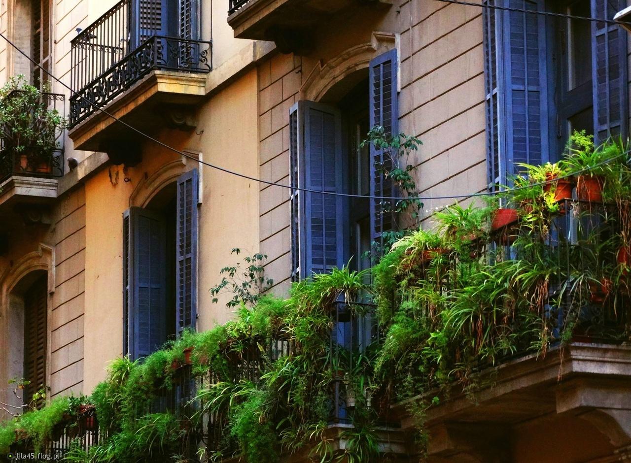 Okiennice, powszechny widok w Barcelonie, mi się podobały i to bardzo.