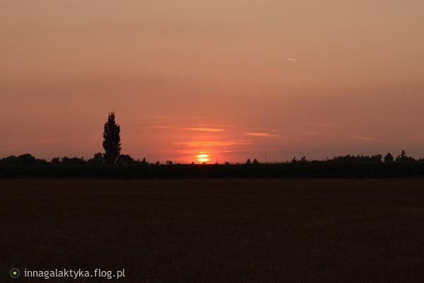 http://s24.flog.pl/media/foto_middle/12144930_w-podziekowaniu-za-dedykacje-pozdrawiam-.jpg