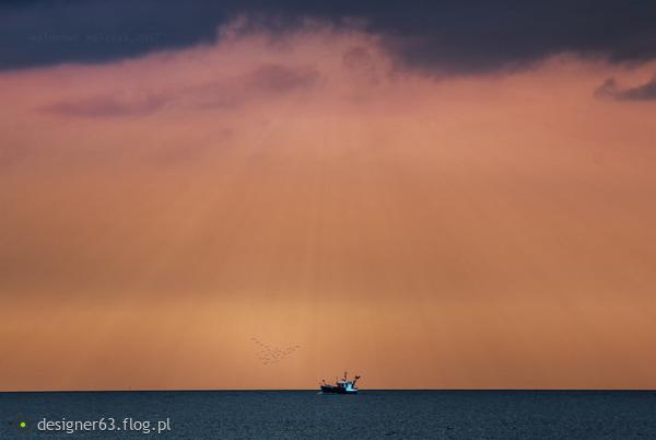 http://s24.flog.pl/media/foto_middle/12151065_powrot-z-lowiska.jpg