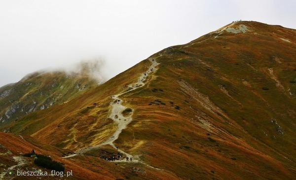 http://s24.flog.pl/media/foto_middle/12155869_na-czerwonych-wierchach.jpg