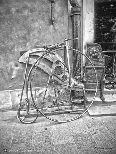 http://s24.flog.pl/media/foto_middle/12197948_bicykl.jpg