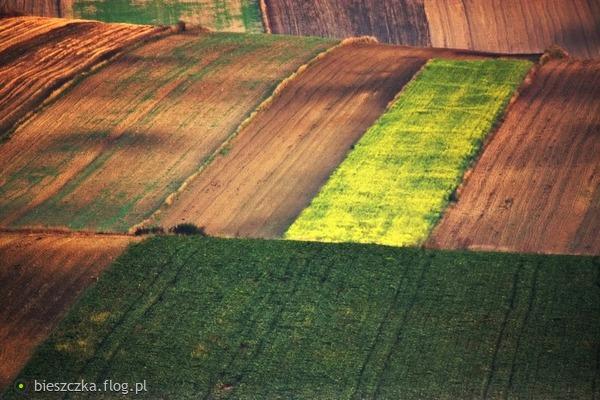 http://s24.flog.pl/media/foto_middle/12198573_pola-jesienia-malowane.jpg