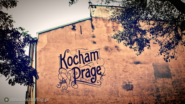 http://s24.flog.pl/media/foto_middle/12205464_publiczne-oswiadczenie.jpg