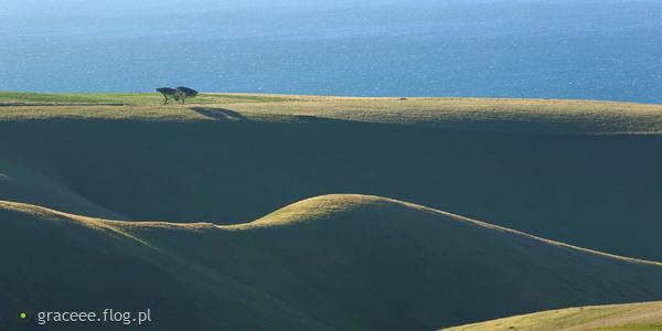 http://s24.flog.pl/media/foto_middle/12207321_ocean-lagodnosci.jpg