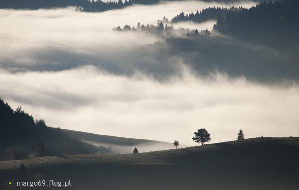 http://s24.flog.pl/media/foto_middle/12208578_jesienna-zadymka.jpg