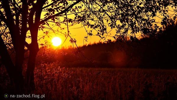 http://s24.flog.pl/media/foto_middle/12210034_jesienny-zachod.jpg