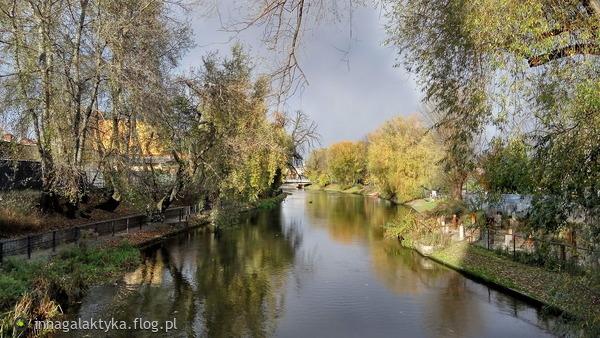 http://s24.flog.pl/media/foto_middle/12236653_z-pozrowieniami-i-w-podziekowaniu-za-dedykacje-.jpg