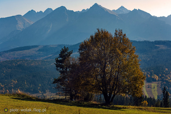 http://s24.flog.pl/media/foto_middle/12271266_jesienny-spisz.jpg