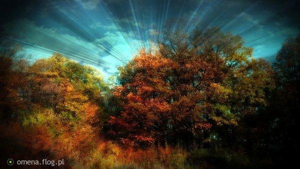 http://s24.flog.pl/media/foto_middle/12271993_jesienniew-sobotce.jpg