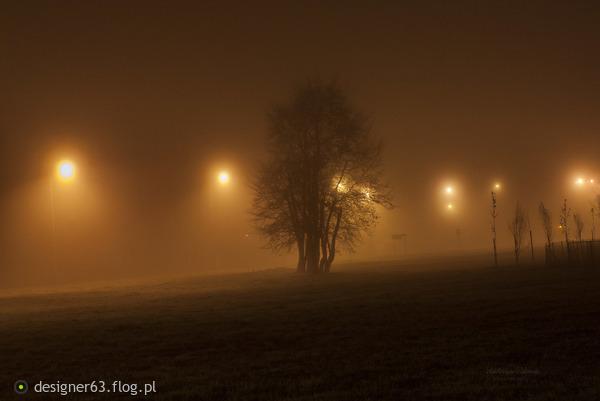 http://s24.flog.pl/media/foto_middle/12276697_listopadowa-noc-w-koszalinie.jpg