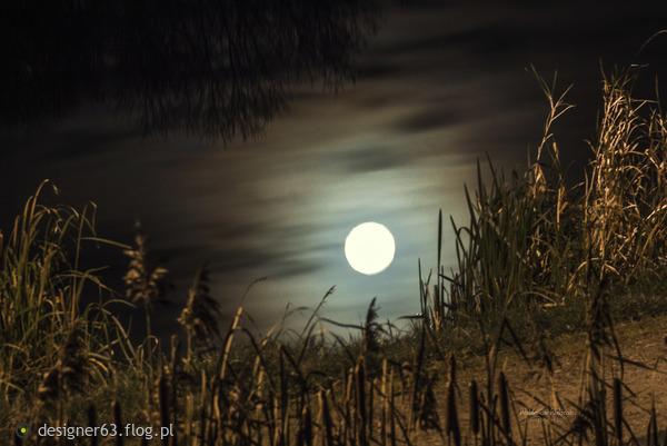 http://s24.flog.pl/media/foto_middle/12297413_lustereczko-powiedz-przecie-.jpg