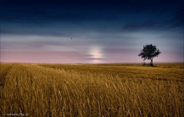 http://s24.flog.pl/media/foto_middle/12305031_krajobrazy-mojej-duszy.jpg