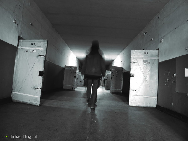 https://s24.flog.pl/media/foto_middle/12317660.jpg