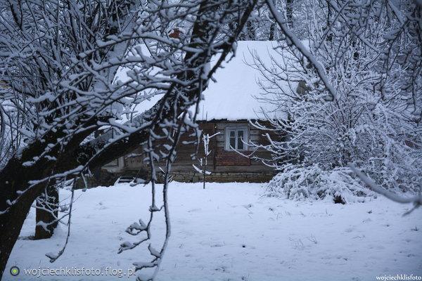 https://s24.flog.pl/media/foto_middle/12330431_ja-rozumiem-ze-wam-jest-zimno-ale-jak-jest-zima-to-musi-byc-zimno.jpg