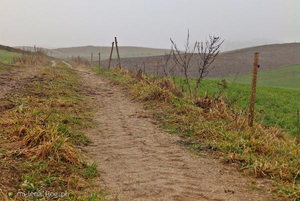 http://s24.flog.pl/media/foto_middle/12331049.jpg