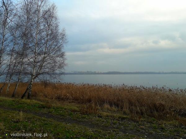 http://s24.flog.pl/media/foto_middle/12344534_jesienny-klimat-w-zimie.jpg
