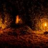 :: Miłego wieczoru,pozdrawia<br />m serdecznie wszystkich o<br />dwiedzających:)