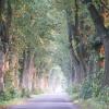 w drogę ! :)))...........<br />.już czas ........ uwielb<br />iam podróżować :)))))