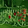 Rower dla miłośników jednośladów! :: Coś weekendowego, kolorowego ,jak zapowiadana  polska jesień!  Wspaniałego wypoczynku i miłego konta