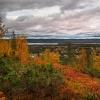 Szwecja...jesień