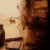 :: Wszystkie zmiany, nawet najbardziej upragnione, odznaczają się melancholią, bo to, co porzucamy, jes