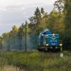 SM42-968 :: 25.09.2017. Szlak: Poraj - Częstochowa Mirów, linia D29-155. SM42 pokonuje leśny odcinek, jadąc na b