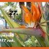 ♥ ♥  KARTKA Z KALENDARZA <br /> 2017.09.27. –.♥ ♥ ♥
