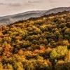Jesień maluje... ::