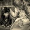 ......... :: Bo koty są dobre na wszys<br />tko. Na wszystko, co życi<br />e nam niesie. Bo koty, to<br /> czułość i bliskoś�