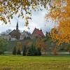 Jesień maluje i karmi me zmysły :) ::