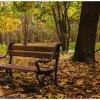 Jesień opanowała parki