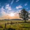 Nadnarwiańskie łąki o wsc<br />hodzie słońca