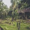 Nuts Huts, Loboc, Filipin<br />y