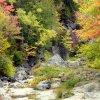 Na zboczach gór- skały, w<br />odospady i kolorowe drzew<br />a