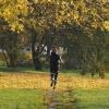 Jesień biegnie przez park<br />...