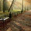 Jesień idzie przez park:)<br />:)