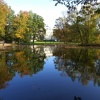Park w Pszczynie.