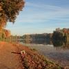 A tak wygląda jesień w mo<br />im ulubionym miejscu, poz<br />drawiam Cię serdecznie:)