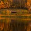 Jesienna harmonia