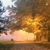 Jesienny poranek na bulwa<br />rach
