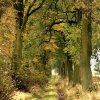 Ach ta jesień, piękne kol<br />ory ze sobą niesie....